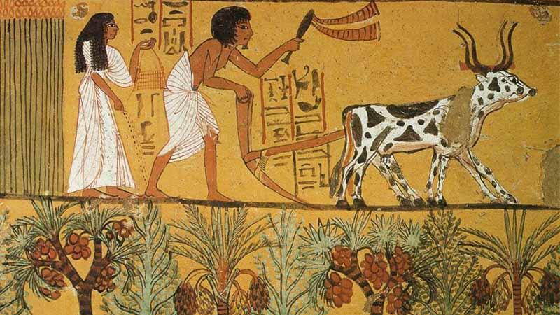 ประวัติอียิปต์
